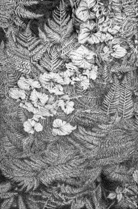 Ivy and Fern Tapestry