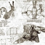 The Vitruvian Hare