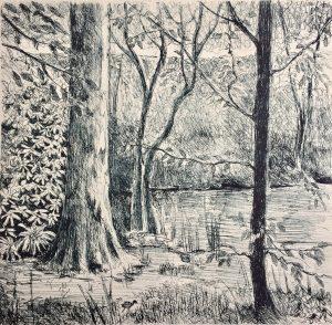 Wakehurst, litho print, Harriet Brigdale