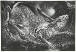 Spring - The Leaping Hare by Clive Riggs SGFA