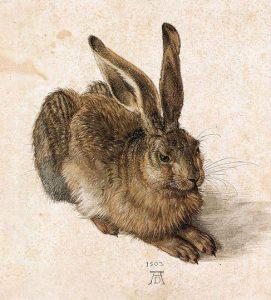 "Albrecht Durer ""Young Hare"""