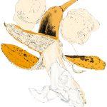 Banana, print, Lucy Clayton