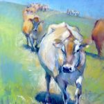 The Jersey Trail - Sue Hardy