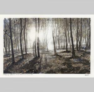 Gary-Cook,-Melbury-Beacon-Winter
