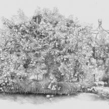 Barton-Elizabeth-Elaine's-Garden-Detail-Graphite