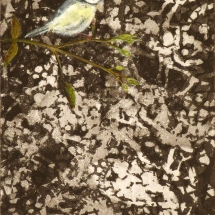 Barton_Jane_Spring Watch II_Etching with hand colouring