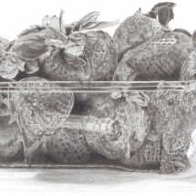 Clayton-Lucy-Strawberries-Pencil