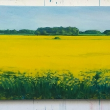 Cousins_Paul_The Yellow Field