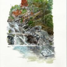 Mike Greaves: Rapaura Water Garden Coromandel