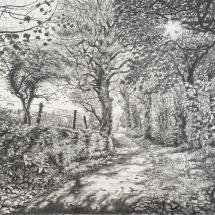 Hole-Alice-The Shapes of Autumn, Penrose-Graphite