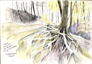 Marie Blake, preparatory sketch for 'Face to Face with Trees'.