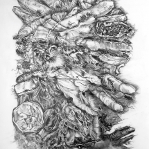 Ridd_Ann_Finger Prints