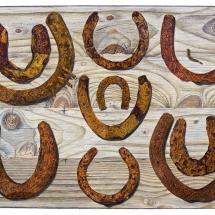 Strange Robert 10 rusty horseshoes