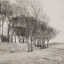 Taylor-Will-Chanctonbury Ring-Etching