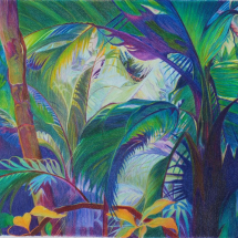 Andrew Sue SGFA Tropical Study