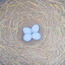 Astbury-Petit Sharron Le Nid de Merle (The Blackbird's Nest)