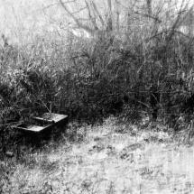 Barrowman Andrew Frozen trough in the corner of a field