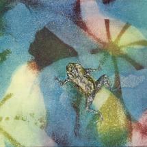 Barton Jane SGFA Springwatch IV (with common frog)