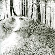 Blake Marie SGFA The Feeling Forest