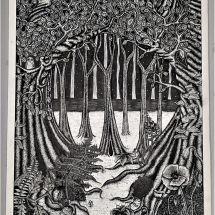 Drinkwater Jodie The Midnight Forest