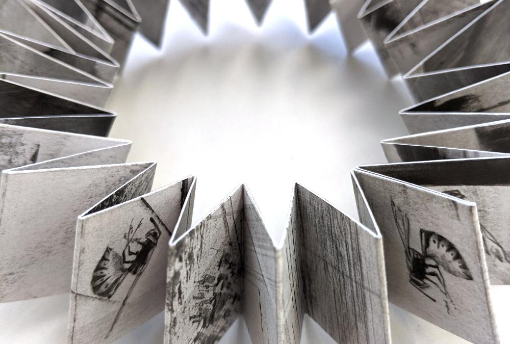 Louisa Crispin SGFA: Concertina Sculpture Demonstration Video