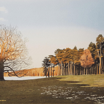 Mashman Anthony Winter Glow, Tatton Park, Cheshire