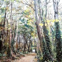 Stanley Stuart SGFA Plantation Walk - Goring II