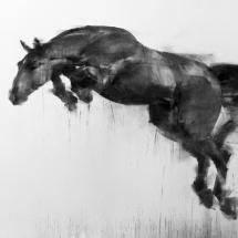 Wang Tianyin The Jump